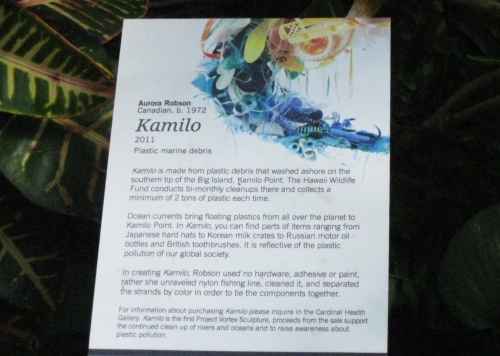 Description of Kamilo by Aurora Robson